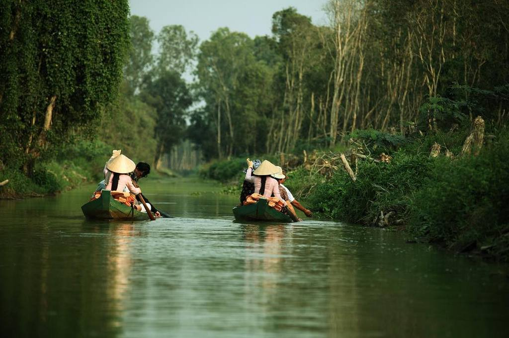 Gao Giong Eco-tourism Park Dong Thap tourist attraction Vietnam