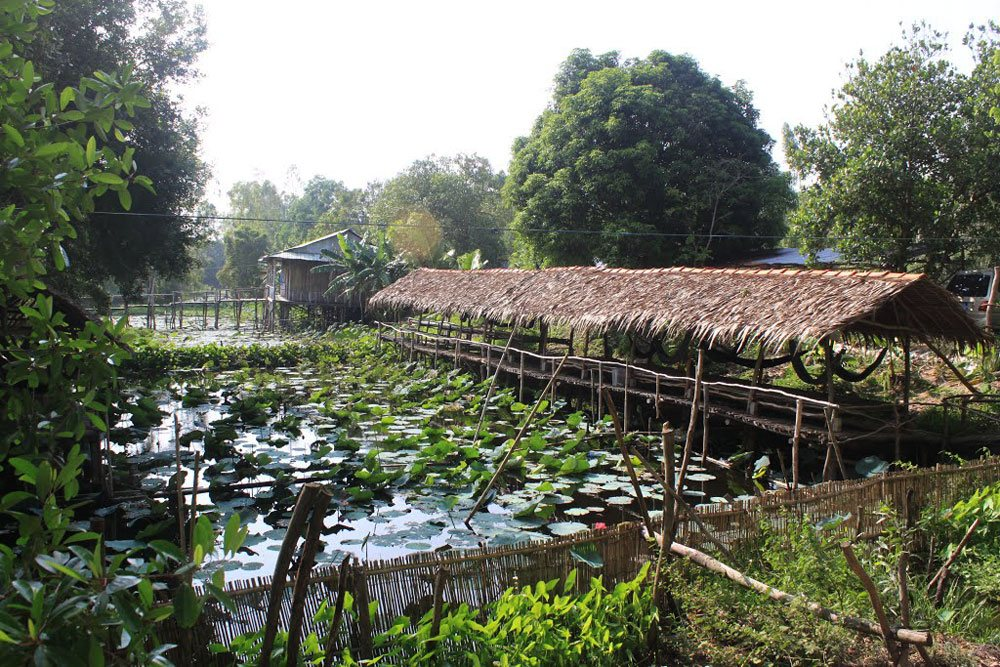 Gao Giong Eco-tourism Part Dong Thap tourist attraction, must-go destination