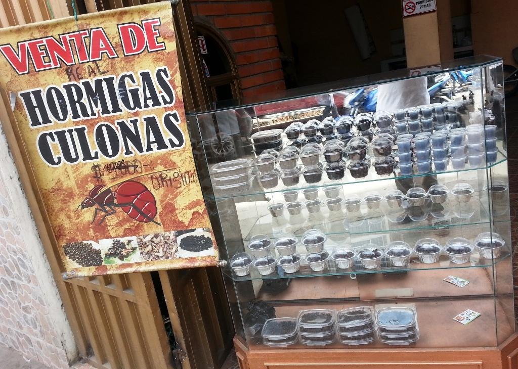 A shop selling hormigas culonas Photo: photobucket