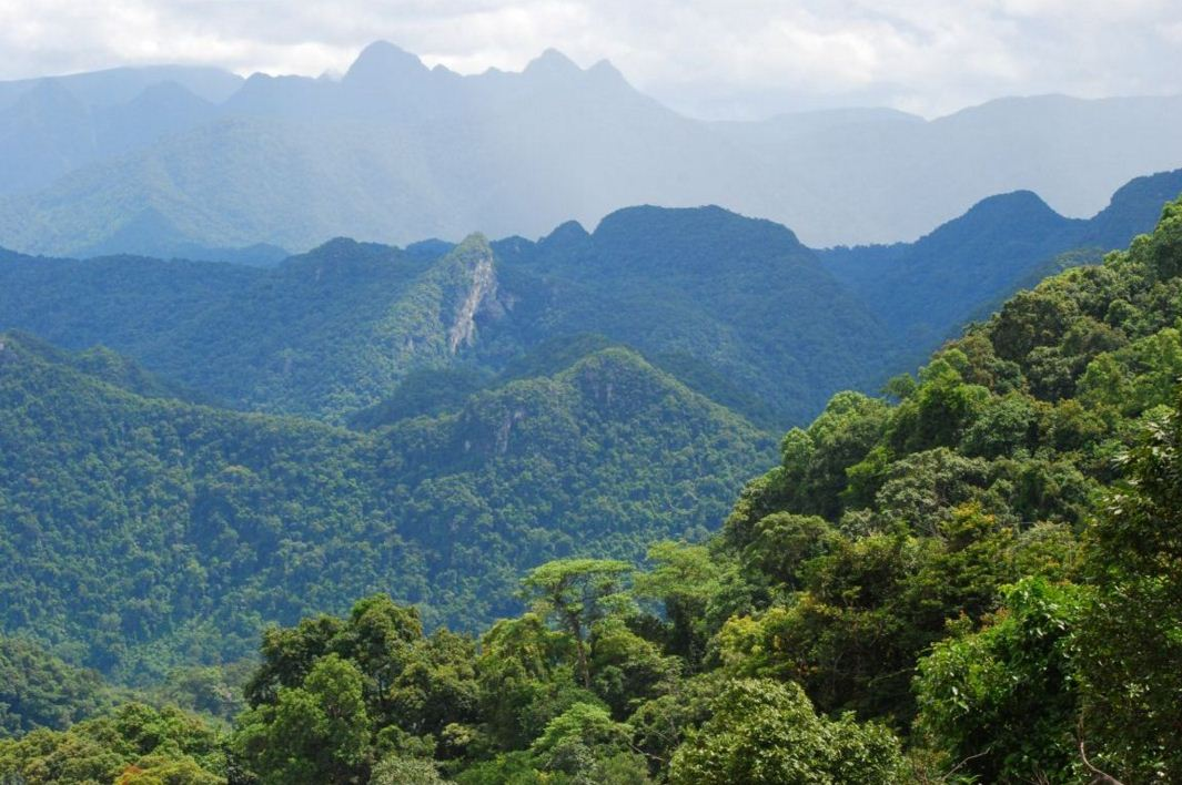 Phong Nha Ke Bang National Park vietnam trekking camping tours 2