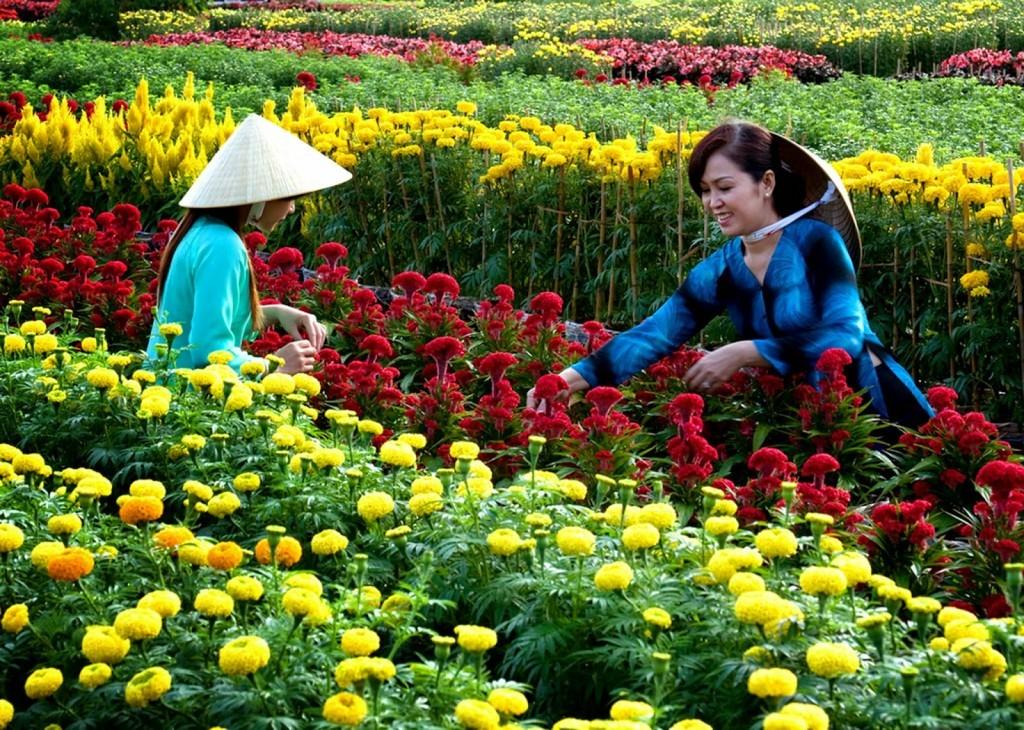 colourful flower village of Sa Dec. Photo: visavietnam.net.vn