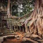 Top 5 places to visit in Cambodia