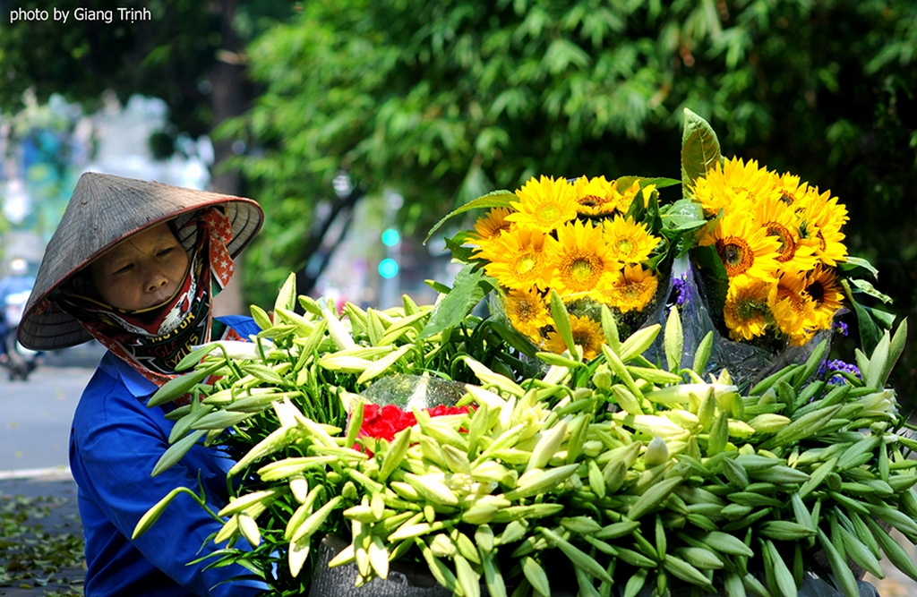 The peddler and the lily bunchs of flower_Hanoi Spring Photo_Photo by Giang Trinh
