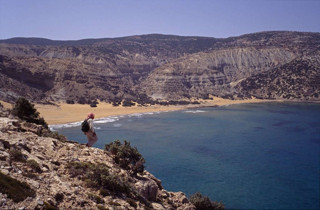 The view of Patamos beach. Photo: greecegreece.com