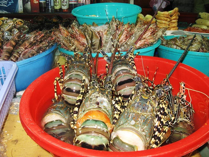 Tinh Bien market bordergate shrimps An Giang Vietnam food tourist attraction guides