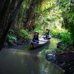 Top 9 must-go places in Dong Thap province, Vietnam