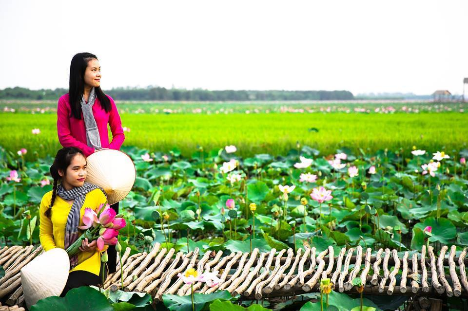 country girls in lotus fileds in Dong Thap, must-go destination
