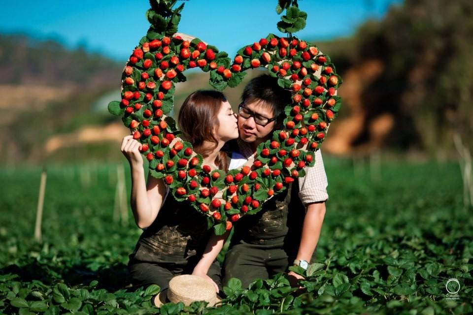 dalat japanese strawberry garden must visit 2