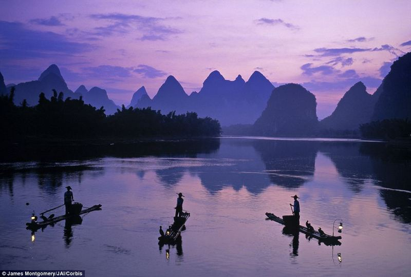 fishing by cormorants in li jiang river china Cormorant fishing Guilin
