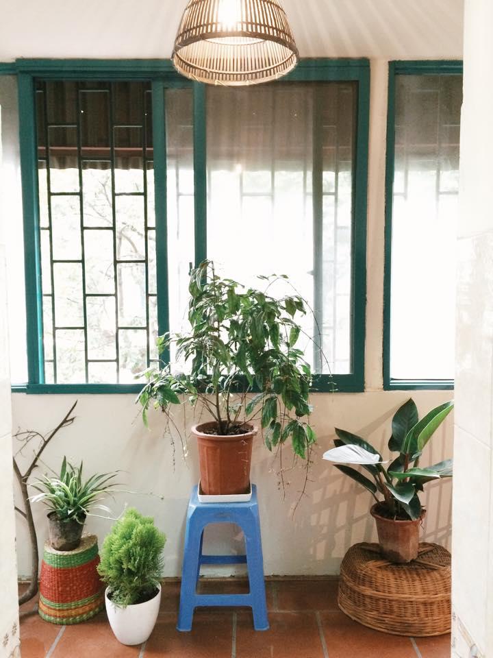 le bleu homstay tran hung dao in hanoi vietnam (3)