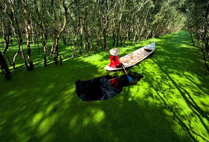 Photo: vietnamonline.com