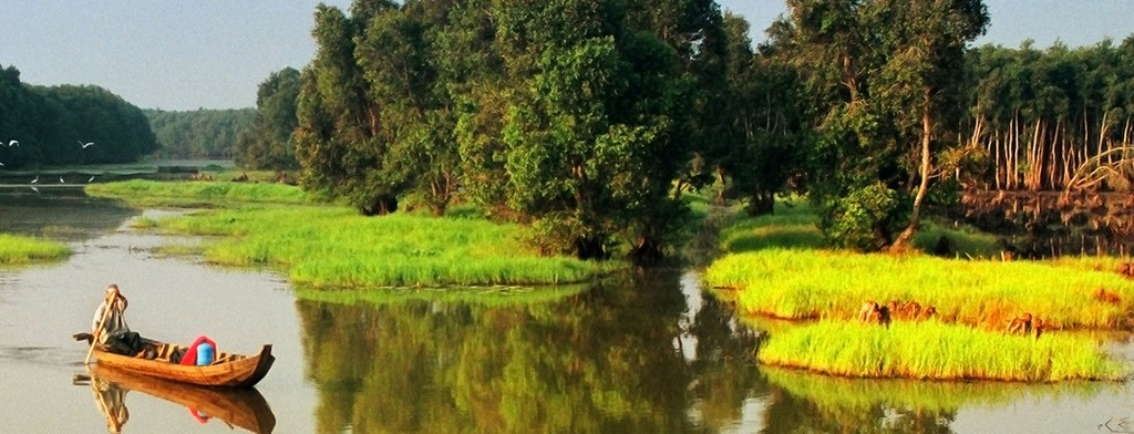 overview of Gao Giong Eco-tourism park Thap Dong destination