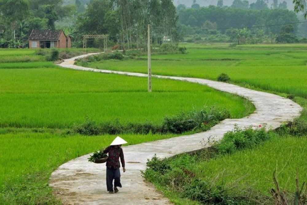 Photo: tophinhanhdep.net Mekong Delta travel guide