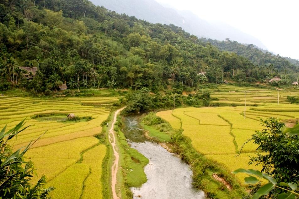 Pu Luong Nature Reserve, Vietnam