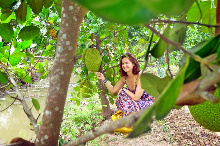 A tourist in a jackfruit garden. Photo: mekongdeltadiscovery.com
