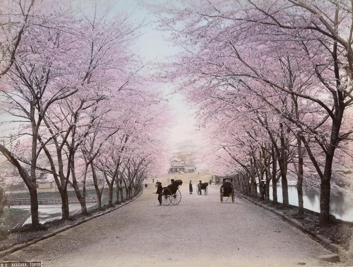 Akasaka, Tokyo - Image by New York Public Library