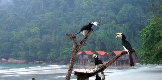 Pangkor island trip guide malaysia (1)