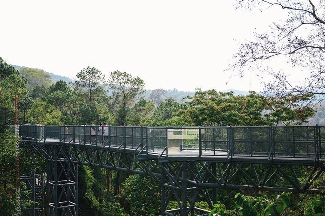 botanic garden cactus nursery chiang mai travel 3 must go places in chiang mai