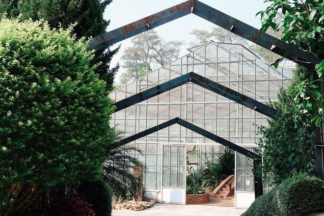 botanic garden cactus nursery chiang mai travel 5