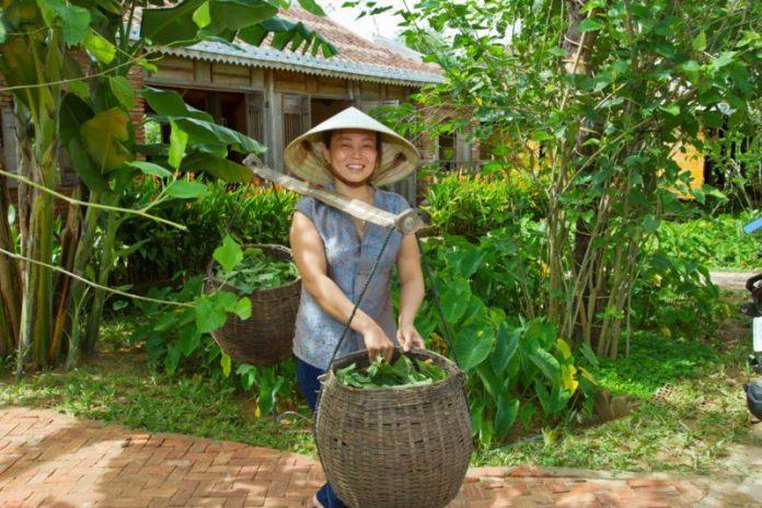 hoi an champa silk village quang nam vietnam trip (1)