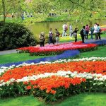 Visiting Keukenhof Gardens – Kingdom of spring