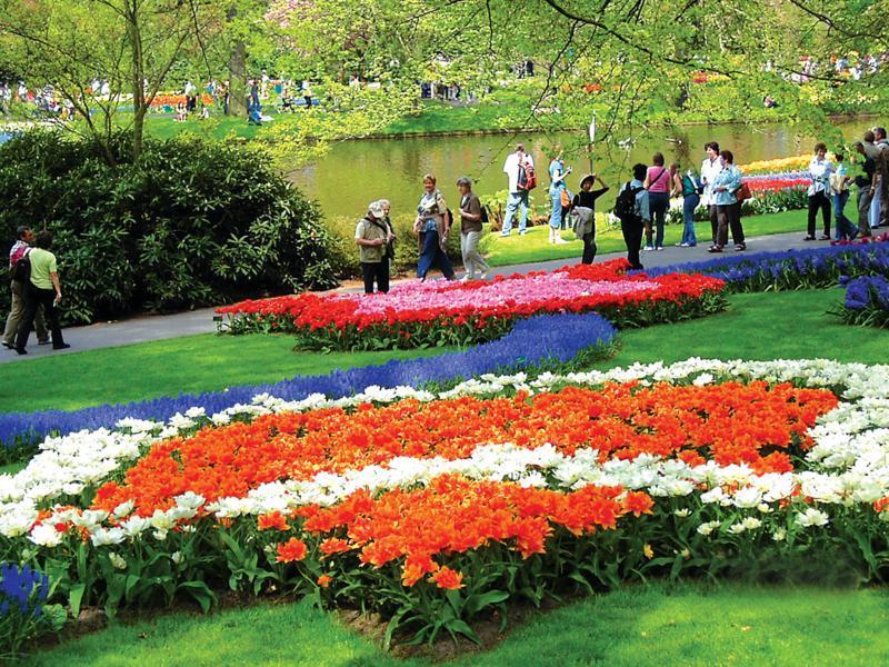 keukenhof flowers garden netherlands spring (1)