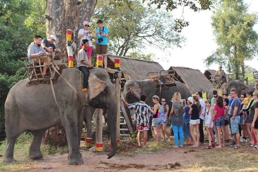 tours ride elephants central highlands vietnam 2
