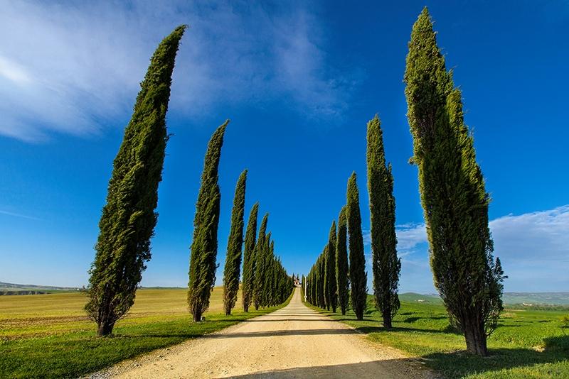 tuscany italy photos photography 1
