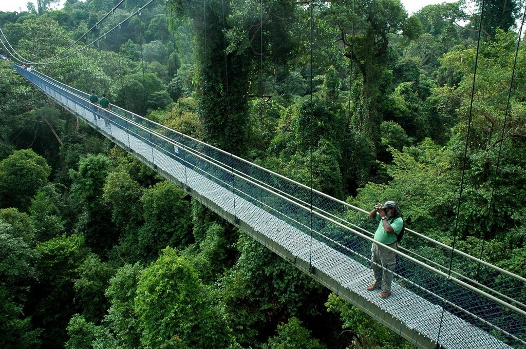Bukit_timah_nature reserve singapore travel destinations 2