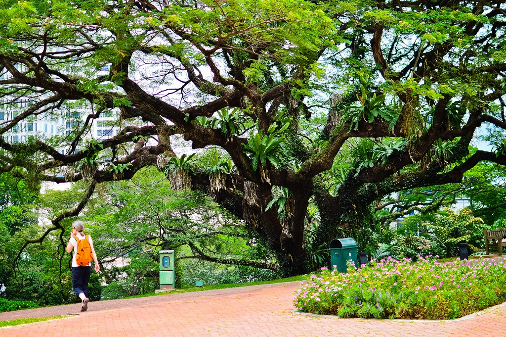 Fort Canning Park Singapore 17
