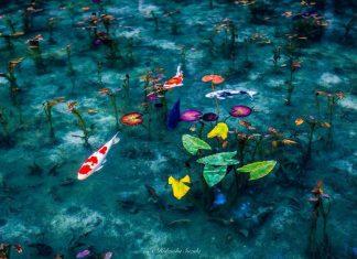 Hidenobu Suzuki photography japan rainy season series photos 1
