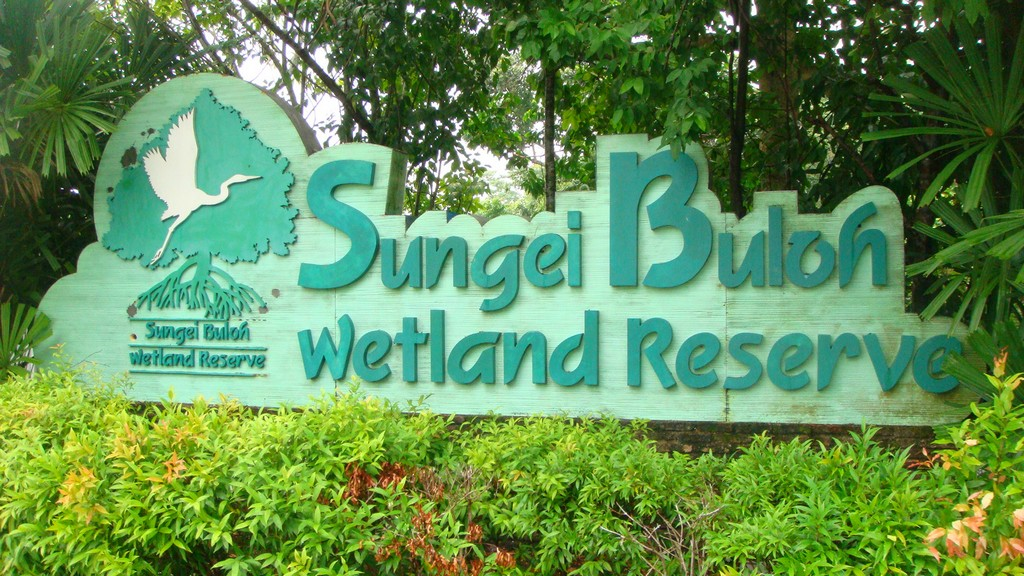 Sungei_Buloh_Wetland_Reserve_Banner singapore 20