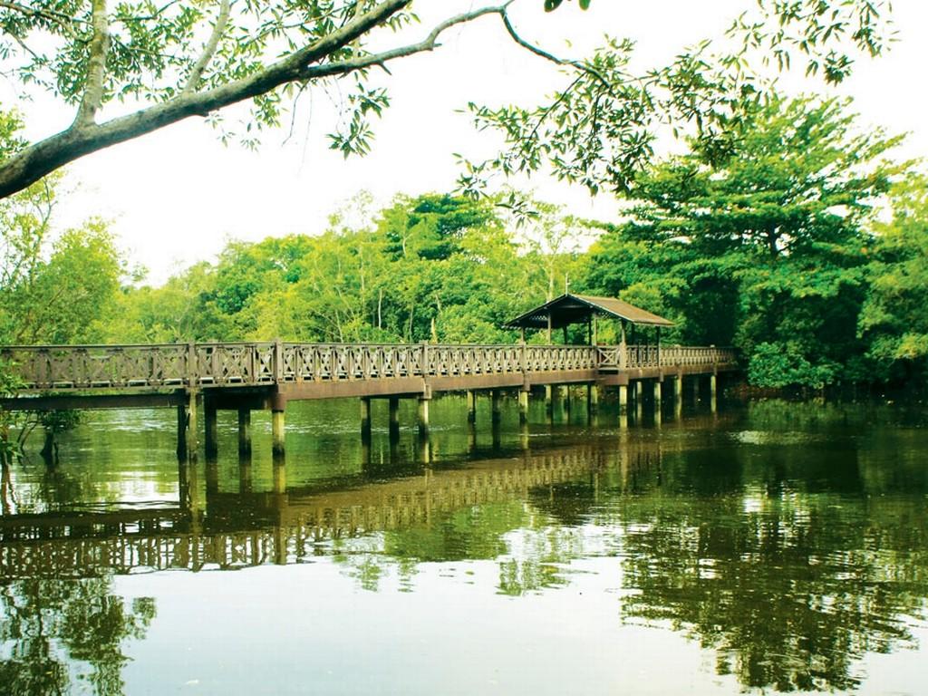 Sungei_Buloh_Wetland_Reserve_Banner singapore 22