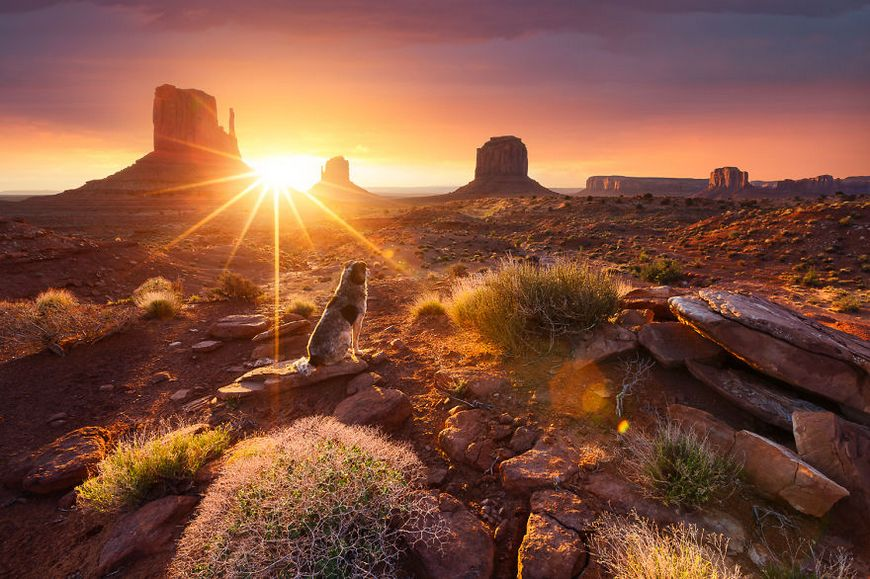 beautiful sunset photos pictures photography around the world 19