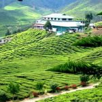 Exploring Cameron Highlands – A peaceful place in the heart of Malaysia