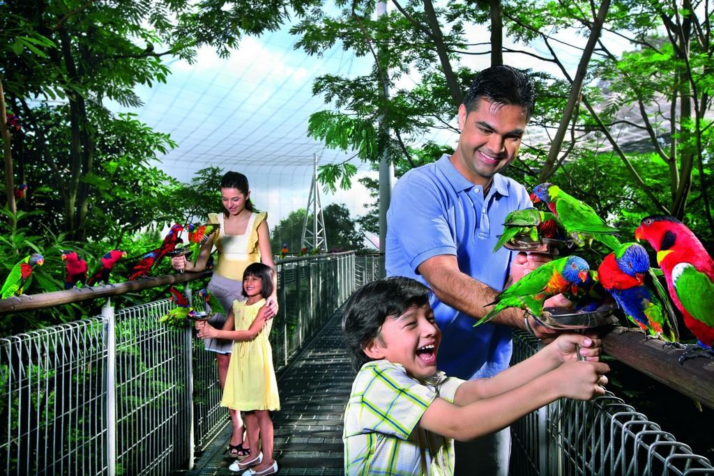 jurong-bird-park-singapore destinations for children 13