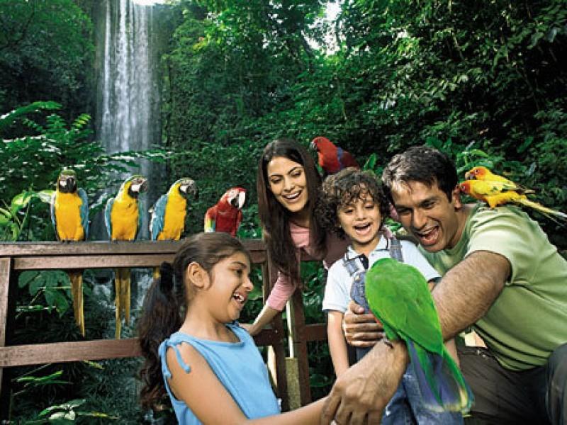 jurong-bird-park-singapore destinations for children 14