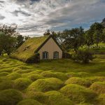 10+ magical green roof scandinavian houses look like straight out of a fairytale