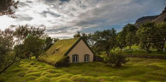 scandinavian houses with grass roofs photos photography pictures 1