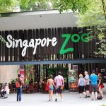 5 best zoo in Singapore for family travel
