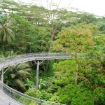Singapore one day trip blog — 24 hours in Singapore