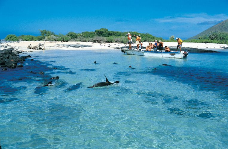 best time to visit galapagos island