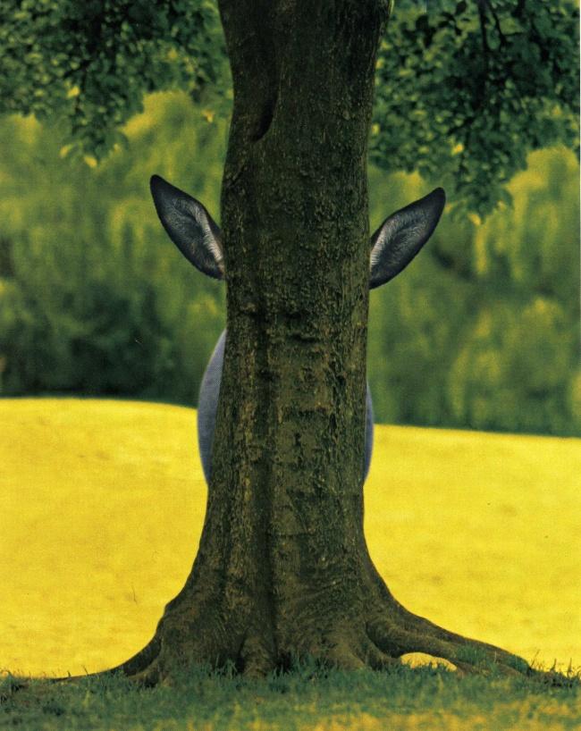 I am so hidden right now!