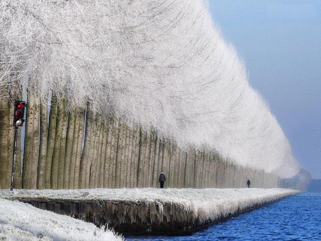 Winter landscape in Grabovica, Serbia