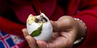 Balut southeast asia