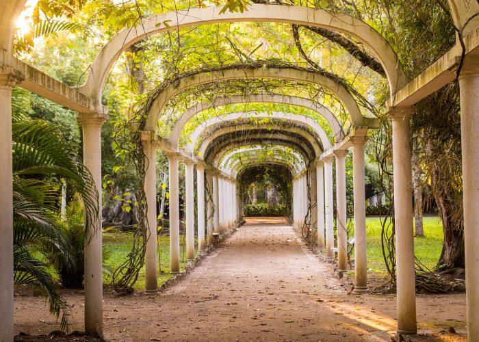 Botanical-Garden-places-see-rio-de-janeiro