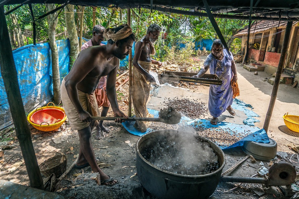 Clam fishing, everyday life, Kerala, India