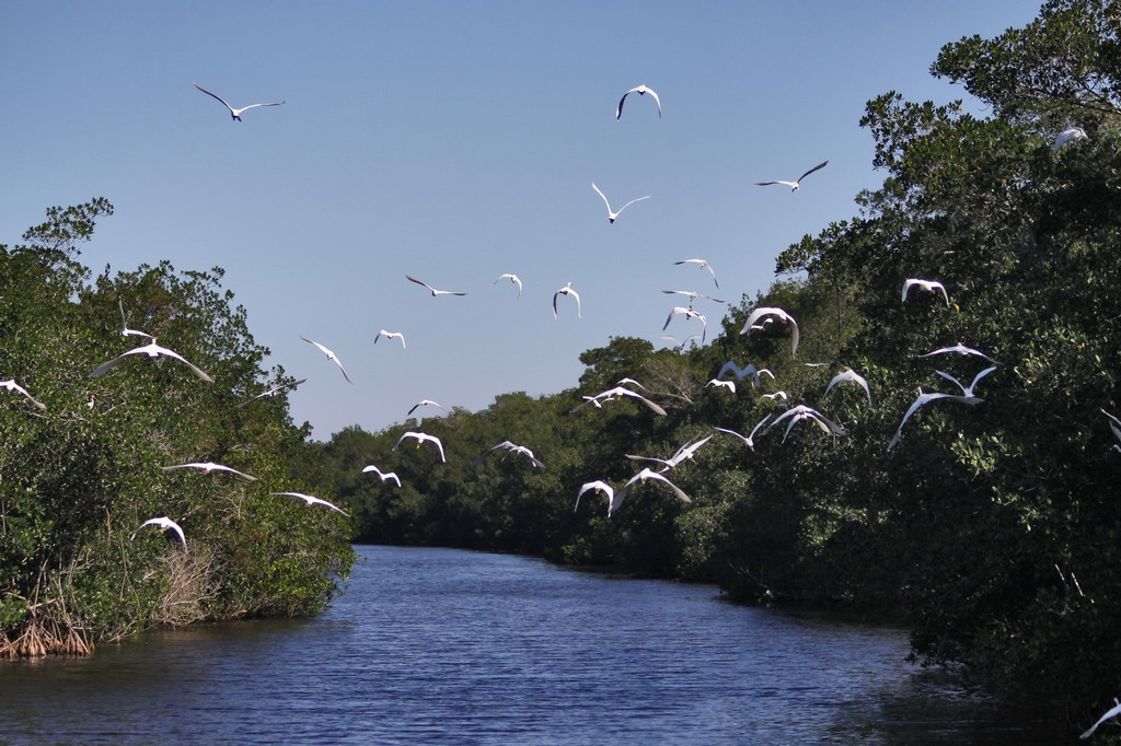 Everglades National Park, US national park