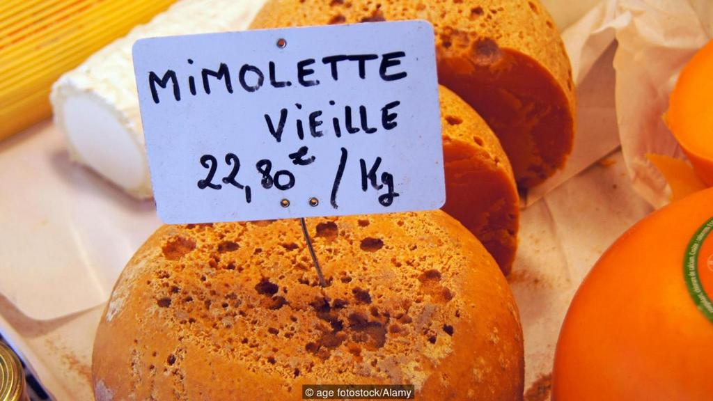 Mimolette cheese france