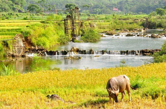Pu Luong retreat, thanh hoa, vietnam